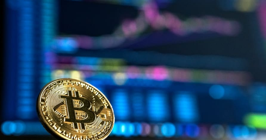 Guide du débutant pour le jeu de crypto-monnaie