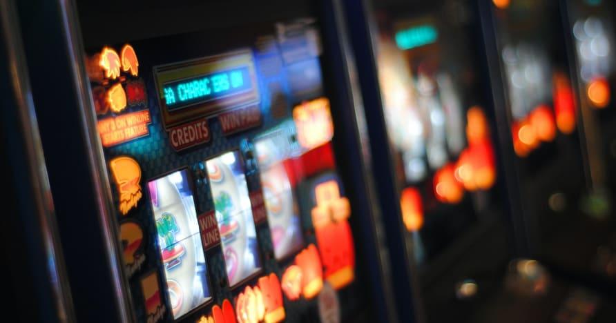Play'n GO Roar en 2021 avec de nouveaux titres de machines à sous